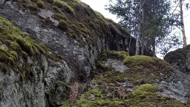 Pystysuora kallio